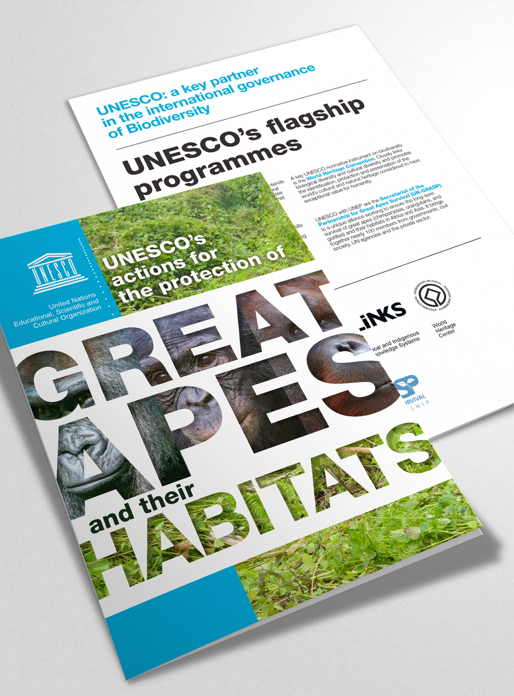 Great Apes Science UNESCO _ Design Agence Si 01